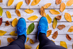 Legs of runner. Blue sports shoes. Colorful autumn leaves. Studio shot on white wooden background Stock Image