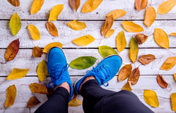 Legs of runner. Blue sports shoes. Colorful autumn leaves. Studio shot on white wooden background Royalty Free Stock Photography
