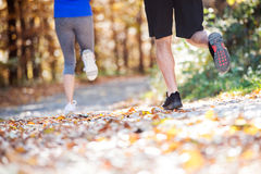Legs of runners outside in sunny autumn forest Stock Photo
