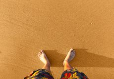 Legs on the sand Stock Image
