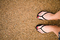 Legs on sandy beach Royalty Free Stock Image