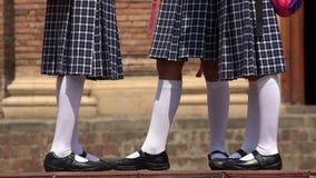 Legs Of School Girls Wearing White Socks. Group of young hispanic female children royalty free stock images