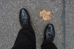 Legs with shoes an a dried maple leaf Stock Photography