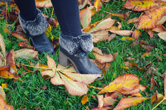 Legs and shoes of girl walking on green grass and autumn leaves Stock Images