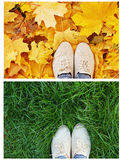 Legs shoes on the green grass Royalty Free Stock Image