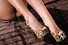 Legs with shoes from tiger pattern Royalty Free Stock Image
