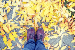Legs and shoes and yellow leaves at autumn. Legs and shoes from above against yellow leaves at autumn Royalty Free Stock Image