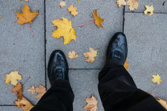 Legs and shoes and yellow maple leafs Stock Image