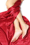 Legs and Silk Stock Photo