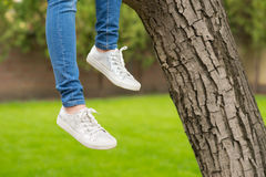 Legs, sneakers and jeans of the girl sitting on the tree Stock Photography