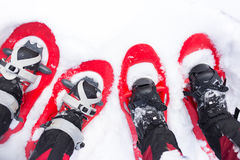 Legs in snowshoes. Royalty Free Stock Image
