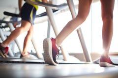 Legs of sportswoman Royalty Free Stock Photography