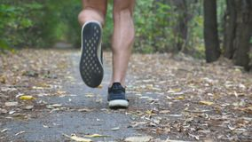 Legs of sporty man running along trail in early autumn forest. Male feet of young athlete sprinting fast along path at. Nature. Strong sportsman training stock footage