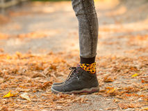 Legs standing in autumn leaves Stock Photos