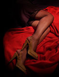 Legs in stockings and high heels Stock Image