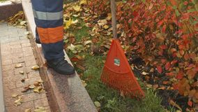 Legs of street worker standing on border and piling up leaves stock video