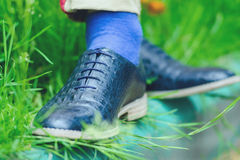 Legs in stylish shoes. On grass Stock Images