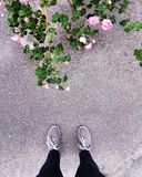 Legs of a teenager on the background of roses and asphalt Royalty Free Stock Photo