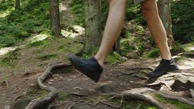 The legs of the tourist`s man go along the forest trail along the roots and stones. Adventure and active lifestyle.  stock video footage