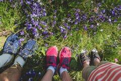 Legs of traveler family Royalty Free Stock Image