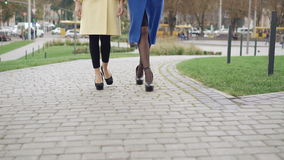 Legs of two girls in coats walking on the pavement 4K.  stock video footage