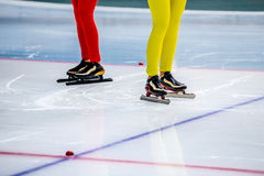 legs of two girls speed skaters Stock Images