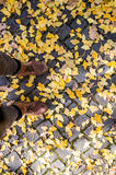 Legs of unrecognizable person in winter boots. Colorful autumn l. Eaves on old cobblestone pavement Stock Image