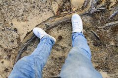 Legs in white sneakers and jeans among nature royalty free stock image