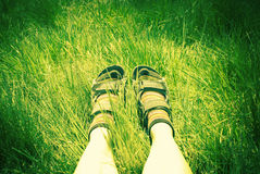 Legs of a woman hiker Stock Images
