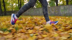 Close up of woman legs running through an autumn park at sunset. Slow motion stock video