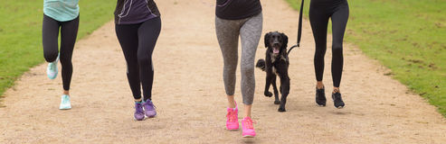 Legs of Women Running at the Park with Pet Dog Royalty Free Stock Photography