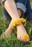 Legs of young woman adorned dandelions Royalty Free Stock Images