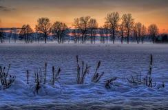 Legt in de winter vast Royalty-vrije Stock Afbeeldingen
