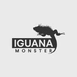 Leguanschattenbild Stockbilder
