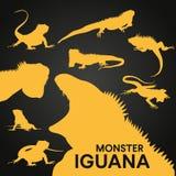 Leguanschattenbild Stockbild