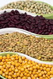Legume. Various kinds of colorful legume in bowl Stock Photography