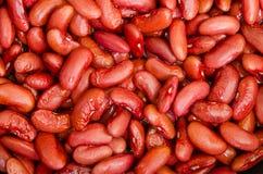 legume Fotografie Stock