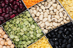 Legume background, assortment  -  kidney beans, peas, lentils in square cells closeup top view. Stock Photos