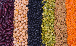 Legume collection Royalty Free Stock Image