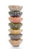 Legume e fagioli dei granuli Fotografie Stock