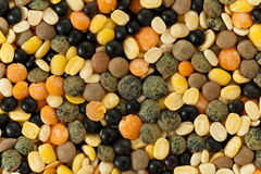 Legume Mix. Selective focus Royalty Free Stock Images