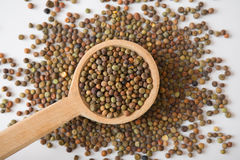 Legume Roveja seeds on a wooden spoon. Legume Roveja in a wooden spoon on white background Stock Photography