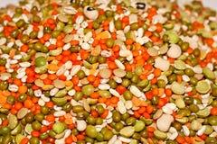 legumes Royaltyfria Foton