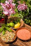 legumes Fotografia Stock