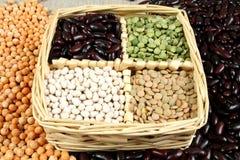 Free Legumes Stock Photo - 4224400