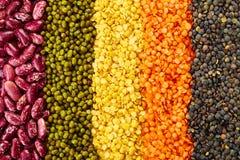 legumes Obrazy Stock