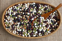Legumes and cereals Stock Images