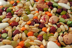 Legumes and cereals. Dried legumes and cereals closeup Royalty Free Stock Images