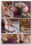 Legumes - Collage Royaltyfria Foton