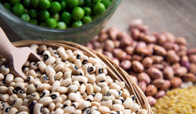 Legumes Dlicious and Healthy Natural  Mix Food Royalty Free Stock Images